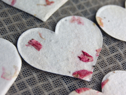 seed paper heart shapes